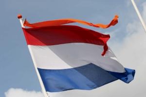 vlag met wimpel