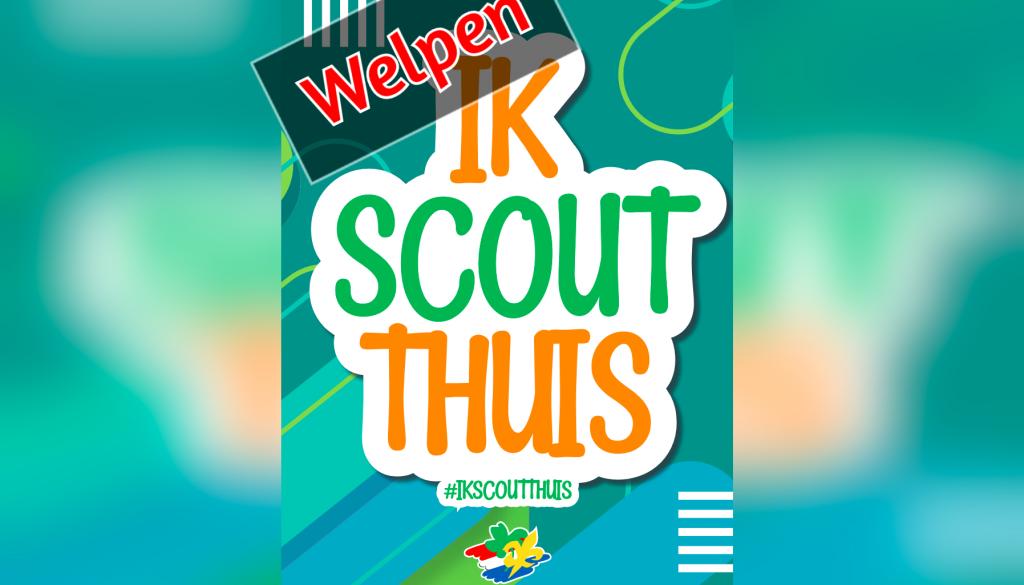 ik_scout_thuis_breed_welpen